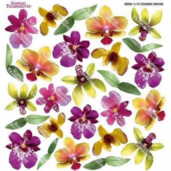 Folia Sospeso COLORED ORCHID